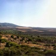 Morocco - Volubilis