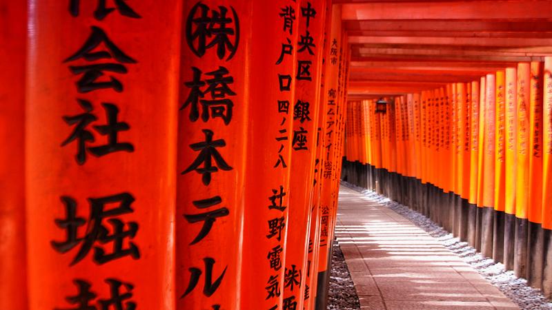 Ten thousands red gates