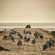 Autumn in Lake Ohrid